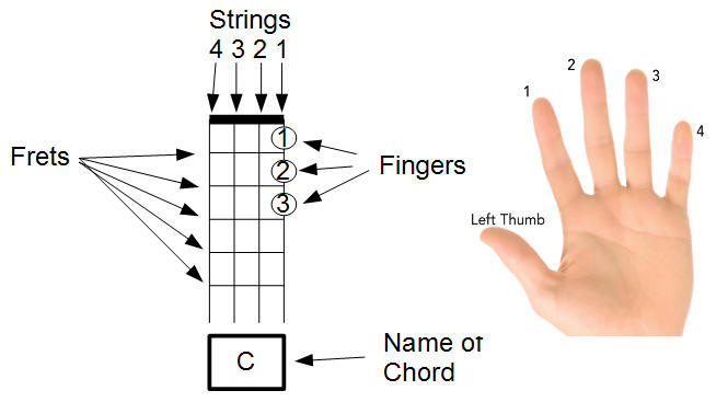 Related Keywords u0026 Suggestions for Ukulele Diagram